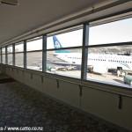 WLG Airport2©-Robert-Catto